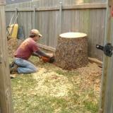 Environmental Tree Service