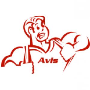 Avis Plumbing & Air Conditioning Inc