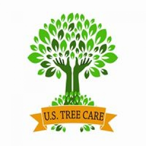 US Tree Care