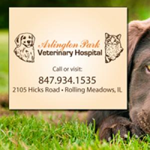 Arlington Park Veterinary Hospital