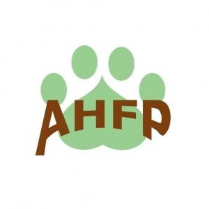 Animal Hospital of Fairview Park
