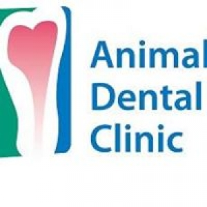 Animal Dental Clinic