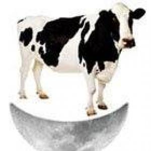 Cow Over The Moon Toys & Sports Memorabilia