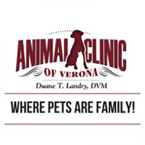 Animal Clinic of Verona