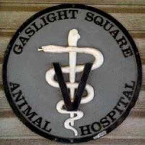 Gaslight Square Animal Hospital