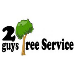 2 Guys Tree Service