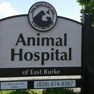 Animal Hospital of East Burke