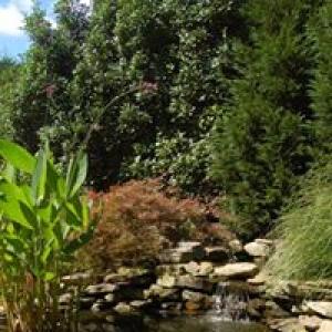 Beautiful Gardens Inc