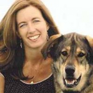 Animal Medical Services of Scottsdale