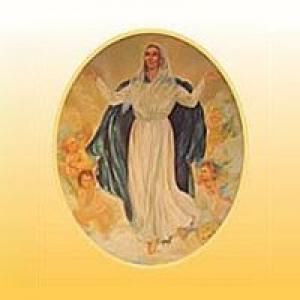 Bvm Church Assumption