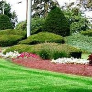 Auscare Landscaping-Irrigation