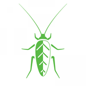 Ecoshield Pest Control