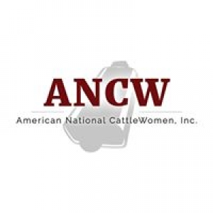 American National Cattle Women Inc