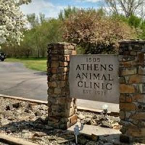 Athens Animal Clinic