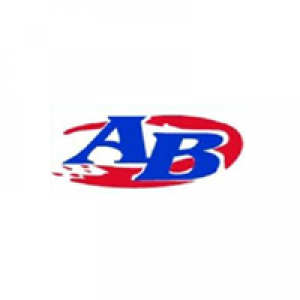 All-Brite Professional Painting & Services Inc