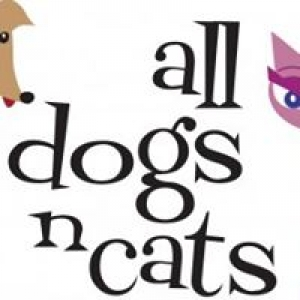 All Dogs N Cats