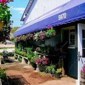 Advance Landscape Center Inc
