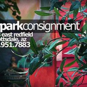 Airpark Consignment