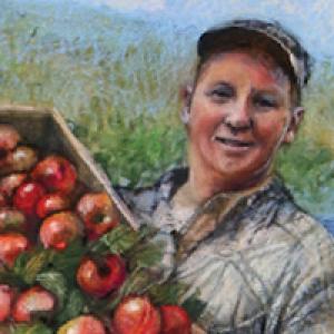 Bayfield Apple Co