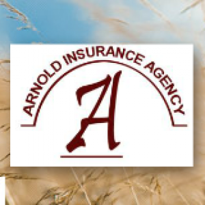 Arnold Insurance Agency