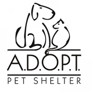 Adopt Animals Deserving of Proper Treatment