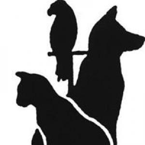 Animal Clinic-The Vet