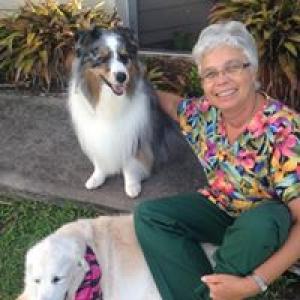 Animal Medical Clinic At Wellington
