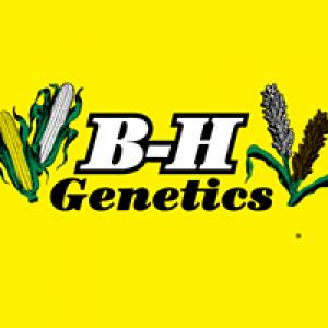 B-H Services Inc
