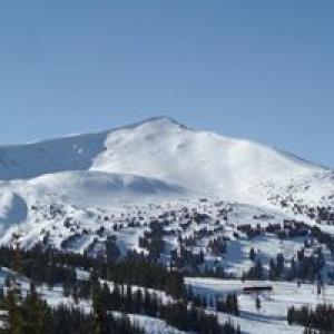 Alpine Realty