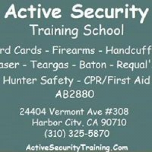 Active Security Training