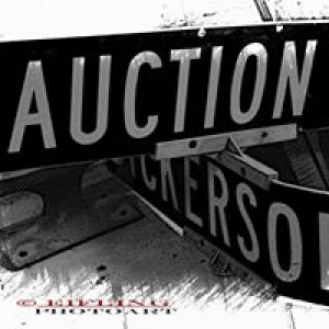 Auto Auctions Inc