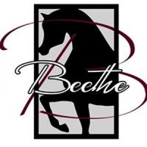Beethe Arabians