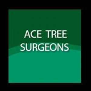 Ace Tree Surgeons