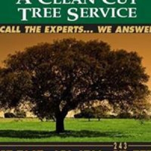 Clean Cut Tree Service & Stump Grinding
