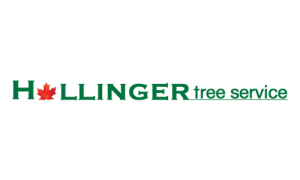 Hollinger Tree Service & Landscaping LLC
