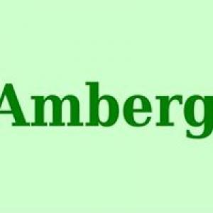 Amberg Insurance Center Inc
