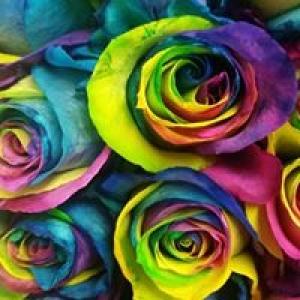 Bel-Air Florist
