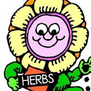 All About Herbs Inc