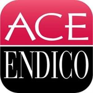 Ace Endico Corp