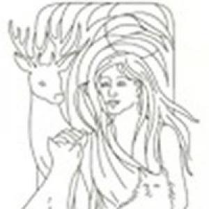 Artemis Animal Clinic