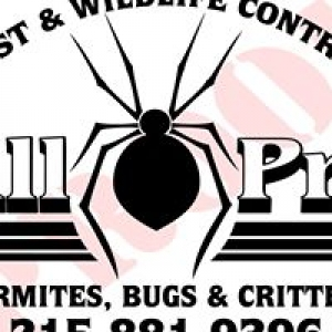 All PRO Pest & Wildlife Control