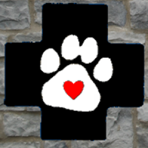 Animal Medical Center of Ontario