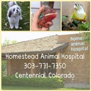 Homestead Animal Hospital