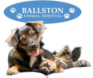 Ballston Animal Hospital