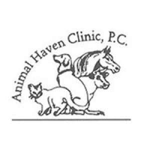 Animal Haven Clinic
