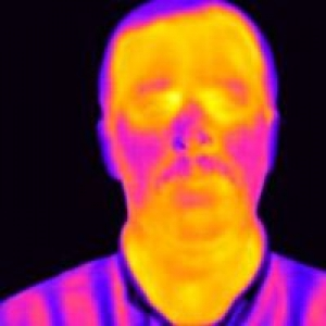 Absolute Infrared Inspection Services
