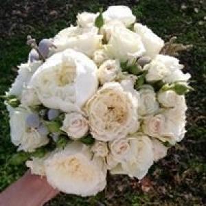 Austin's Flowers