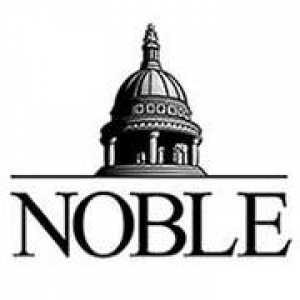 Noble Investment Group Limited