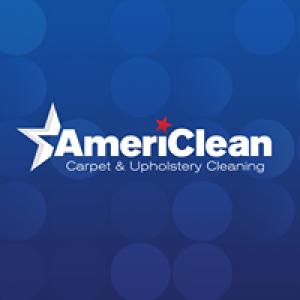 Ameri Clean Inc