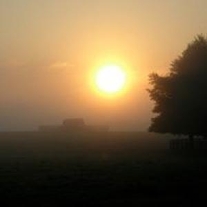 Ashview Farm